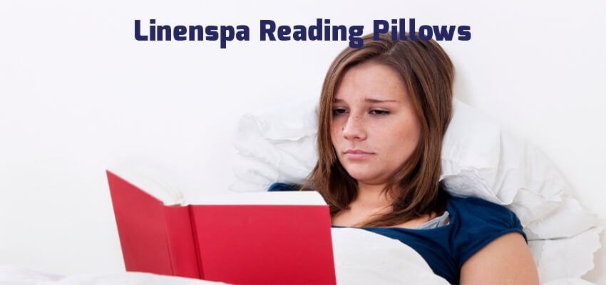 Linenspa Reading Pillows