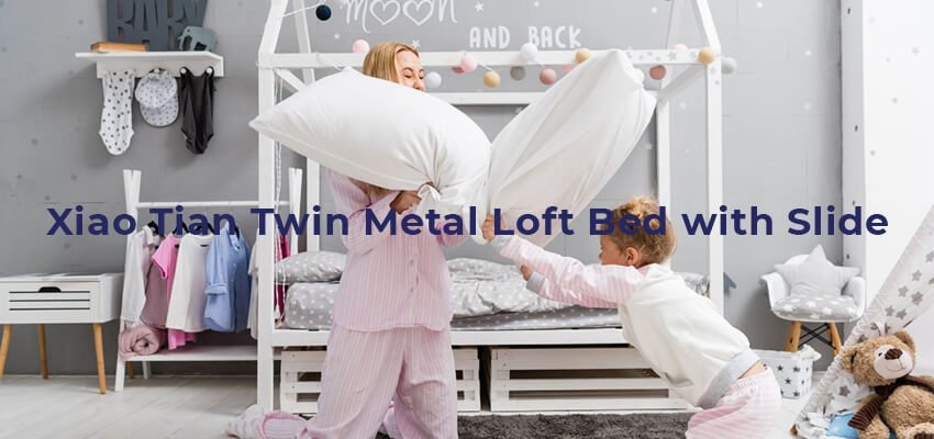 Xiao Tian Twin Metal Loft Bed with Slide