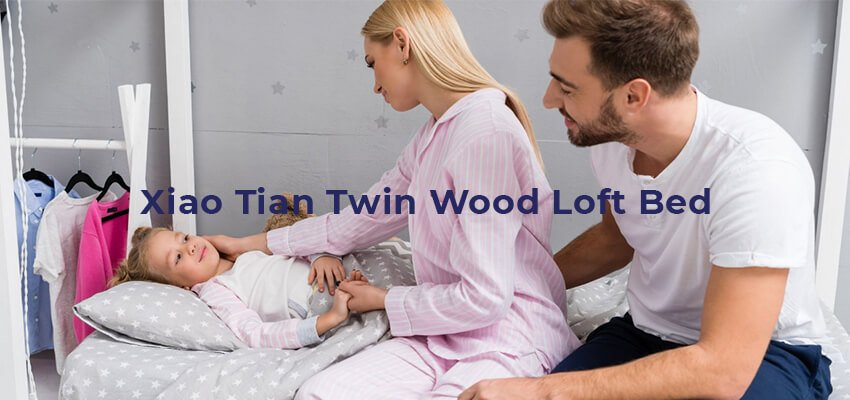 Xiao Tian Twin Wood Loft Bed